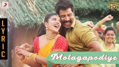 Photo of Saamy² – Molagapodiye Lyric song