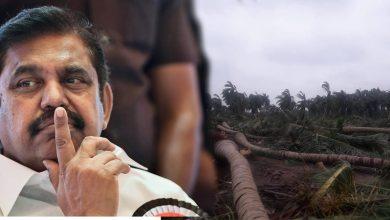 Photo of கஜா புயல்… தமிழக அரசு 1000 கோடி ஒதுக்கீடு!