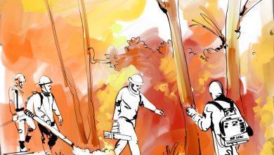 Photo of அமேசான் காடுகளை காக்கப் போராடும் வீரர்களை ஊக்குவிக்கும் ஓவியர் ஏபி ஸ்ரீதர்