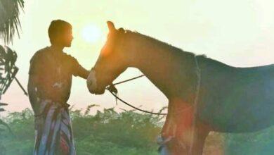 Photo of அசுர வியாபாரத்தில் தனுஷின் 'கர்ணன்'; பெரிய தொகைக்கு சென்ற திரையரங்கு உரிமை!